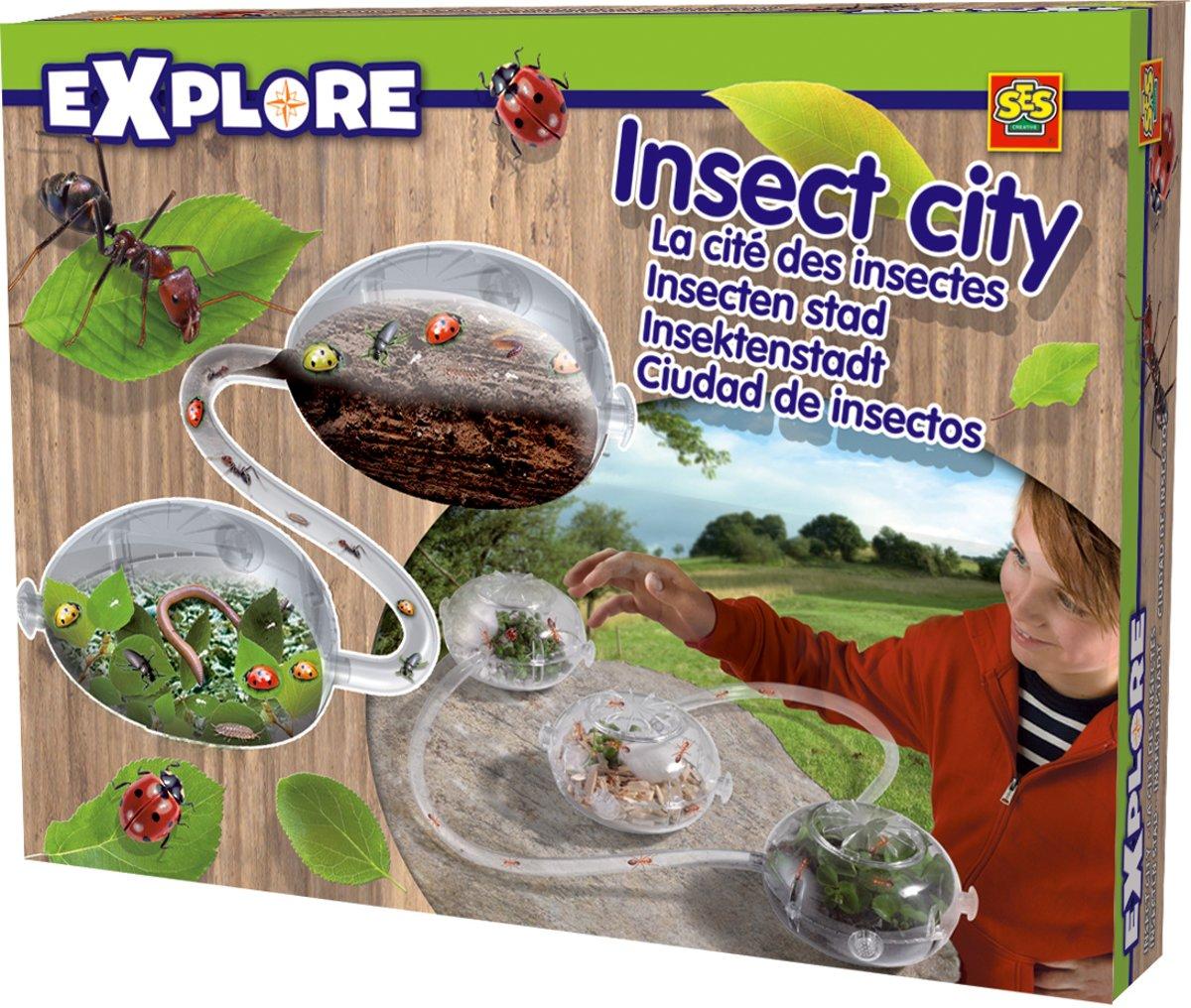 Kids N Fun 16 Kleurplaten Van Insecten