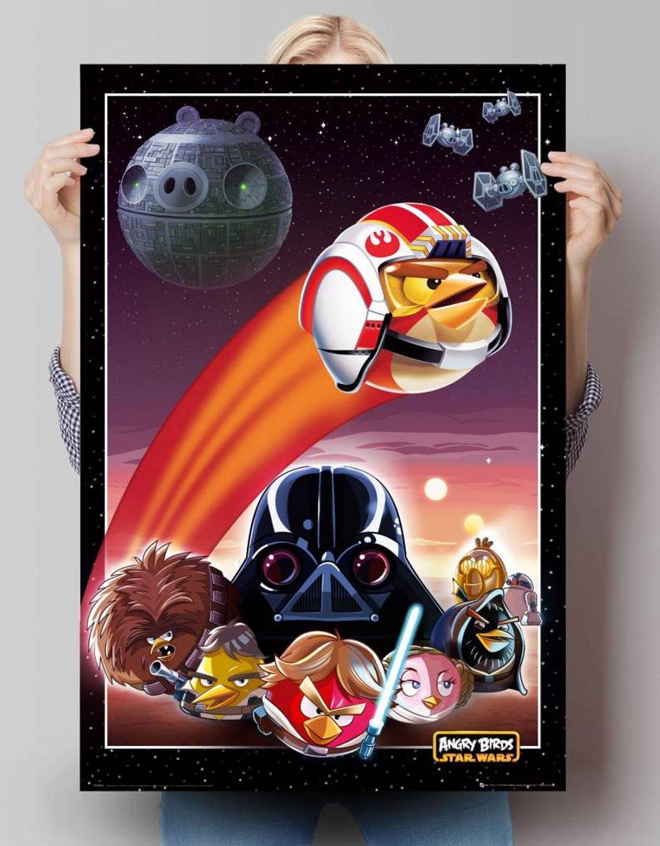 Kids n fun 7 kleurplaten van angry birds star wars - Angry birds star wars 8 ...
