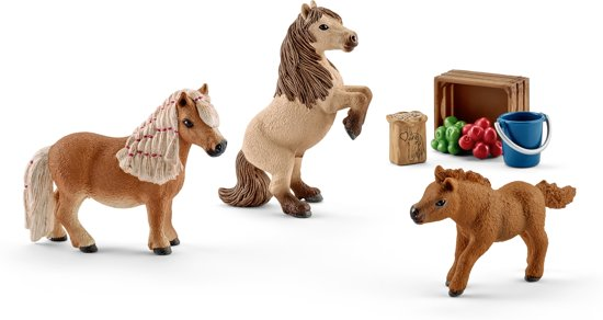 Schleich Mini Shetty Familie 41432 in Nijensleek
