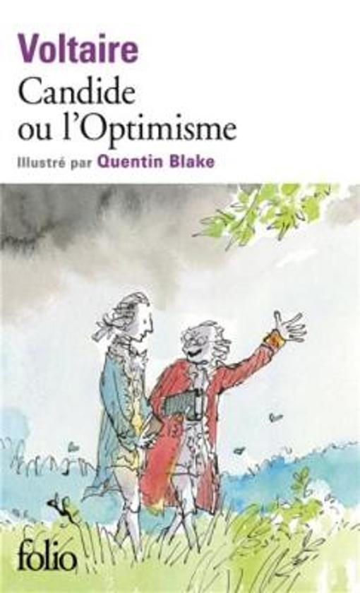 a literary analysis of philosophical optimism in candide by voltaire Use this teacher's guide on candide, a farcical, humorous, and far-fetched satire, to expand your classroom discussions and learn more about author voltaire and his work.