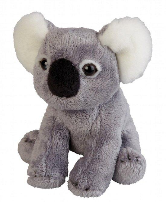 Pluche koala knuffel 15 cm in Wilp