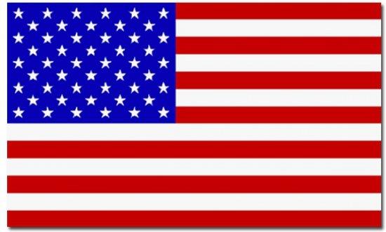 bol vlag amerika usa