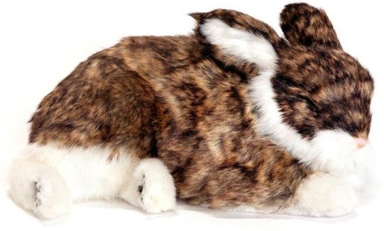 PERFECT PETZZZ Kauwspeelgoed Perfect petzzz konijn 30 x 20 x 10 cm - 1 ST in Koewacht