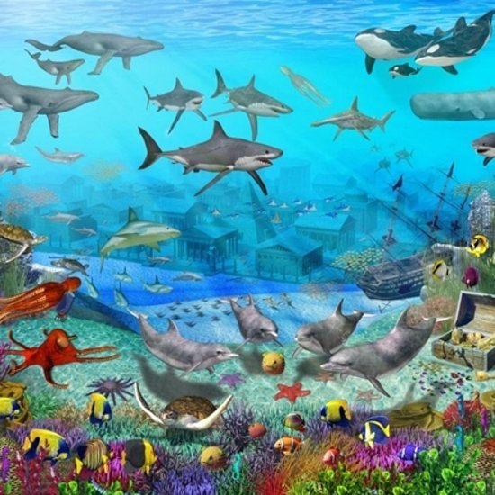 Bol Com Walltastic Posterbehang Onderwater