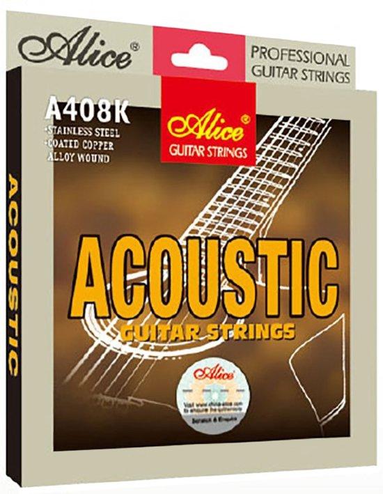 Snaren voor akoestische gitaar .012 - A406P-L in Ter Apel
