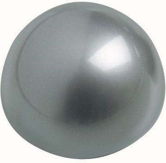 Maul Kogelmagneet diameter 30 mm set van 10 stuks zilver in Korte Akkers