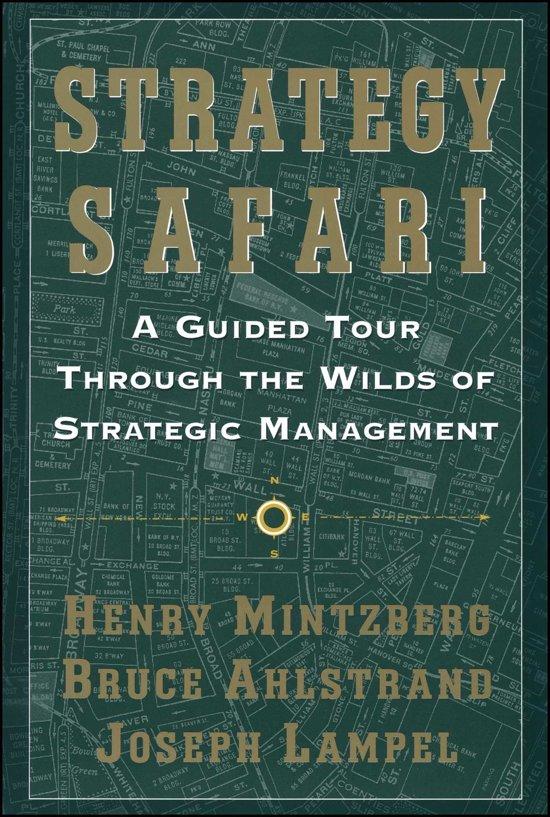 Strategy Safari in Giessen-Oudekerk