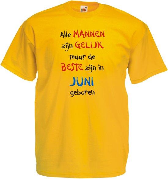 Mijncadeautje - T-shirt - geel - maat XL -Alle mannen zijn gelijk - juni in De Wierren
