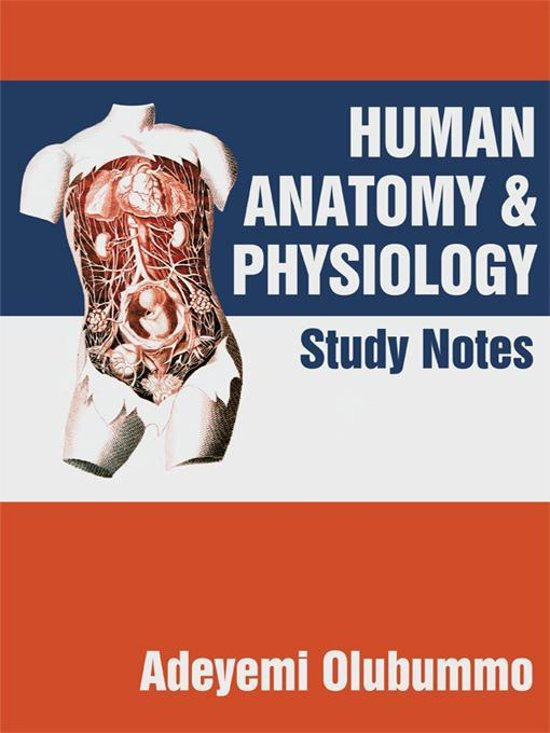 anatomy and physiology notes Understand the anatomy of the human body systems: respiratory, digestive and immune.