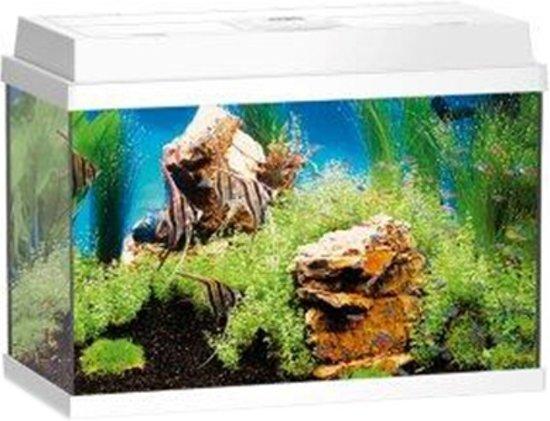 juwel rekord aquarium 70 liter wit. Black Bedroom Furniture Sets. Home Design Ideas