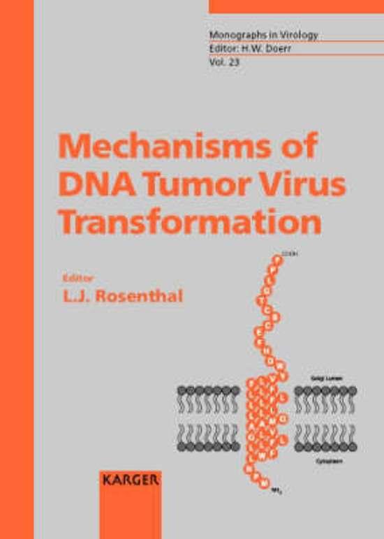 Repetitorium der Buchführung: Handbuch für