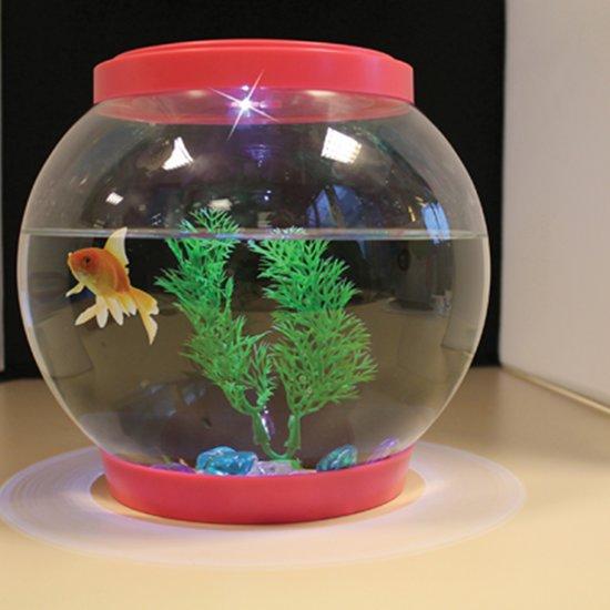 Glazen vissenkom met verlichting for Bol com verlichting