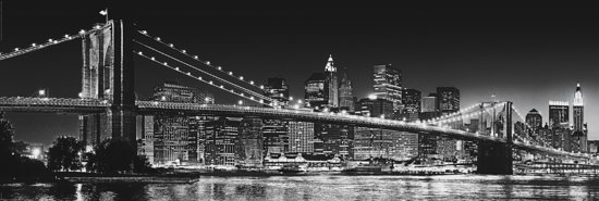 bol.com  Deco Panel New York - Brooklyn bridge in zwart/wit  Wonen