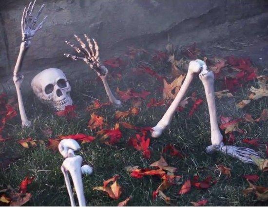 Halloween schedel met ledematen set in Doosje