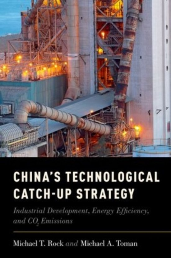 China's Technological Catch-Up Strategy
