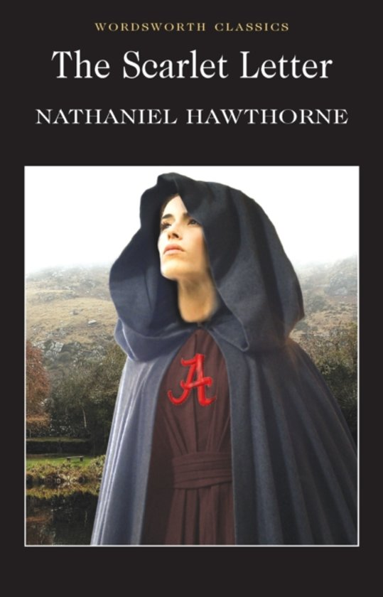 the tough puritan society in the scarlet letter by nathaniel hawthorne Living in a puritan society,  feminism in the scarlet letter  hawthorne, nathaniel the scarlet letter new york,.