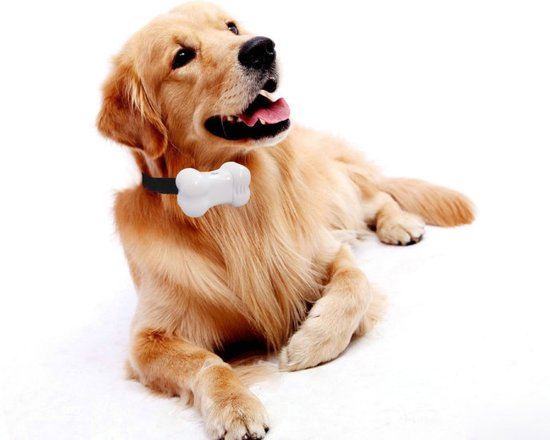 Anti Honden Geluid