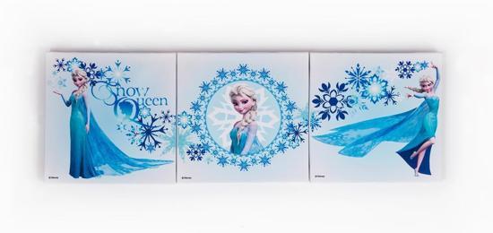 Frozen Slaapkamer Artikelen : bol.com Disney Frozen Canvas set ...