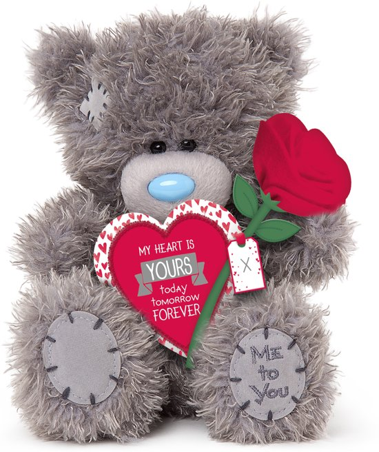 Me To You Heart & Rose 40cm - knuffelbeer in (De) Haspel