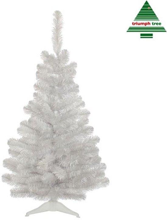 kerstboom kunst sneeuw lampjes