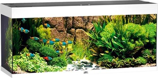 juwel rio aquarium 240 liter wit. Black Bedroom Furniture Sets. Home Design Ideas