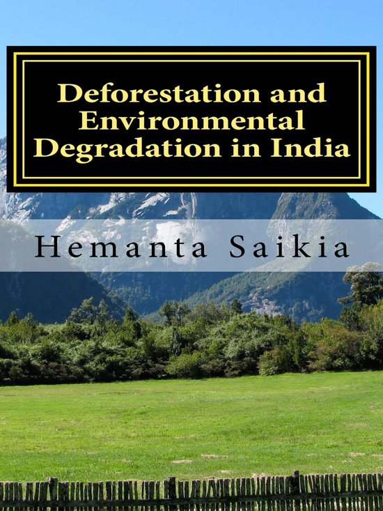essay environmental degradation