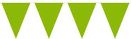 Groene vlaggenlijn 10 meter in Langweer / Langwar