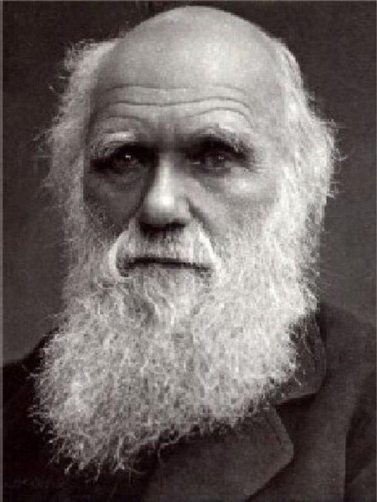 Darwinian subsidence theory