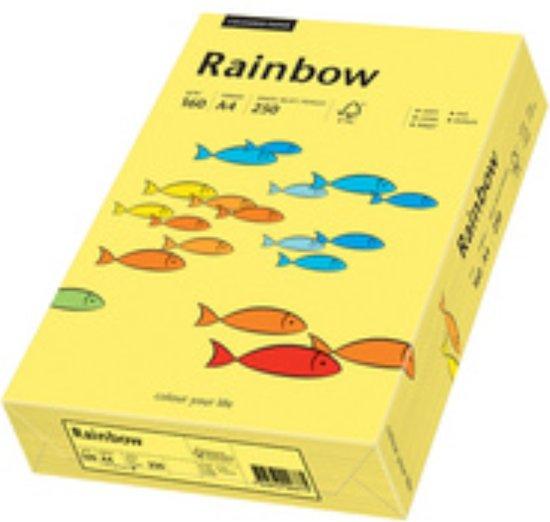 Rainbow gekleurd papier A4 160 gram 24 oranje 250 vel