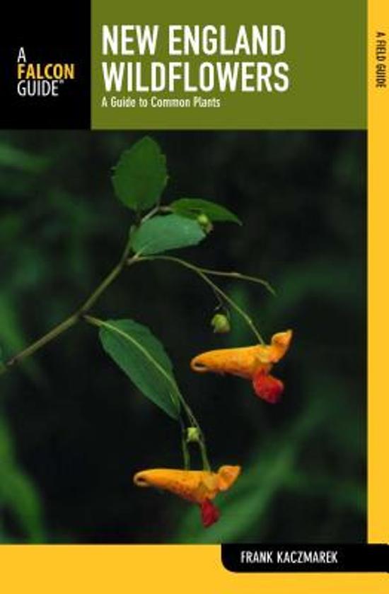 New england wildflowers frank kaczmarek 9780762748204 boeken - Decoratie new england ...