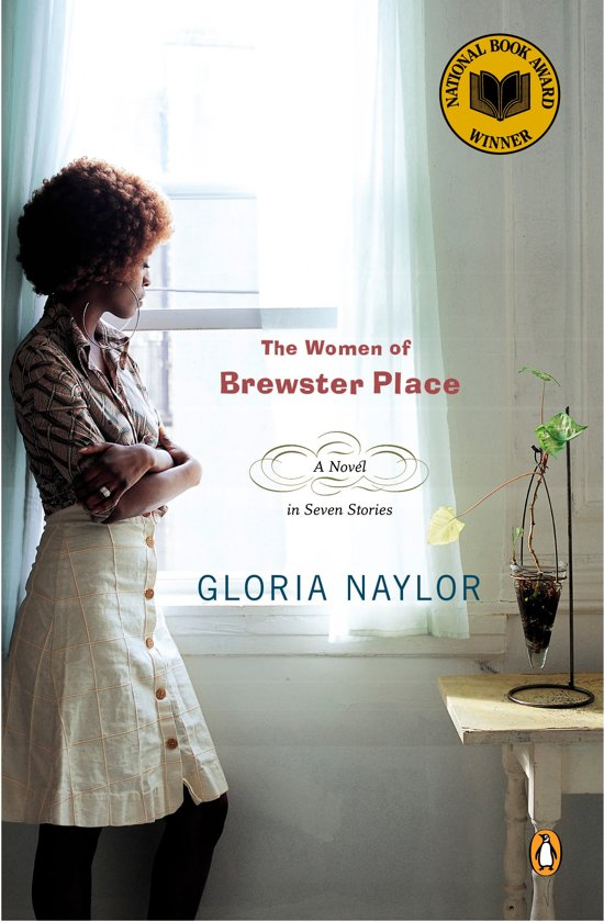 Talk:The Women of Brewster Place (novel)