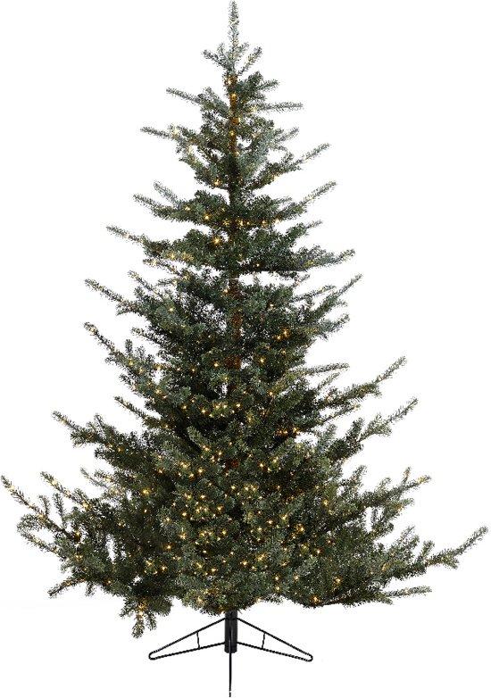 Kerstbomen In Gelderland