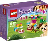 LEGO Friends Puppy Training - 41088