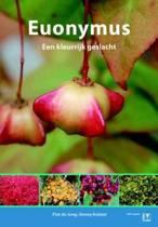 Euonymus