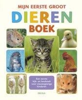 Boek 1e groot dierenboek