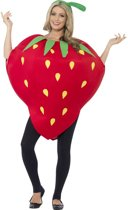 Aardbei Kostuum Strawberry Costume Onesize past tot XL