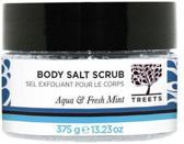Treets Aqua & Fresh Mint - 400 gram - Salt Scrub