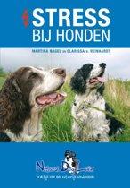 Stress bij honden 3e druk
