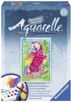 Aquarelle - Papegaai