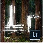 Adobe Photoshop Lightroom 6.0 - Engels/ Windows/ Mac