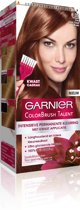 Garnier Colorbrush Talent - No. 6.35 Chic Light Golden Brown - Haarkleuring