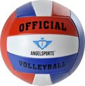 Volleybal Official size