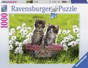 Ravensburger Picnic in the Meadow - Legpuzzel - 1000 Stukjes