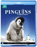 BBC Earth - Pinguins Undercover (Blu-ray)