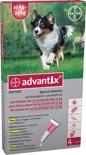 Advantix hond 250 (van 10 - 25 kg) - 1 st à 4 Pipetten