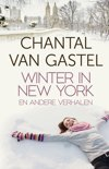Winter in New York en andere verhalen (ebook)