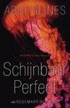 Schijnbaar perfect (ebook)