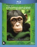 Chimpanzee (Blu-ray)