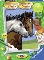 Schilderen Op Nummer - Paardenvriendschap