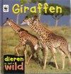 Dieren in het wild - Giraffen